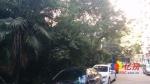 三号线菱角湖站口海关宿舍2楼,对口北湖小学,武汉江汉区复兴村常青路兴业街二手房3室 - 亿房网