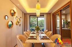 新洲区阳逻不限购大品牌品质住房通透房型地段优越