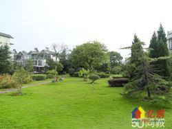 奥林匹克把边别墅 带转角大花园 精装修入住不满一年 全房赠送