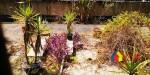 惠西小区2楼单价16000南北通透通风采光好,武汉江岸区台北香港路香港路片高雄路167号二手房4室 - 亿房网