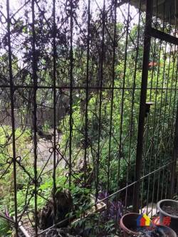 宝岛公园万象城商圈 ,2楼送80平米大露台学区房 低价出售