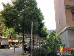 阳逻佳阳摩尔城旁 阳光明珠 中心地段 精装两房 仅售74万