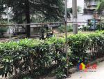 东立国际对面新大地花园通透两房明厨明卫采光好楼层低诚心出售,武汉江岸区二七二七工农兵路109号二手房2室 - 亿房网