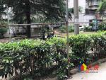 !新大地花园138万!千年等一回别错过,武汉江岸区二七二七工农兵路109号二手房2室 - 亿房网