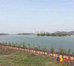 一线湖景,70年纯独栋别墅小区,湖岸1000平大花园带证