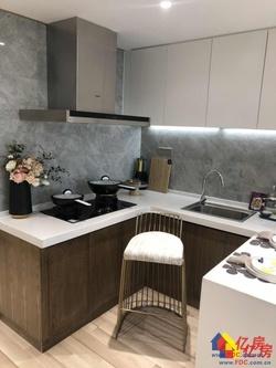 武昌内环中心+开发商直售+买一得二无中间费用+5.2米公寓