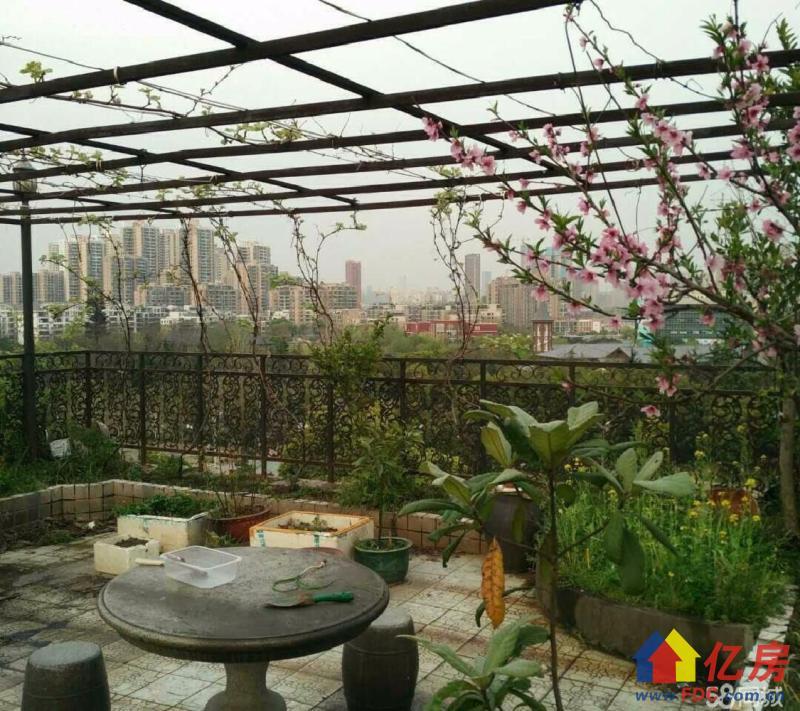常青花园二十四村 真实在售  老证税少 主要带空中花园急售,武汉东西湖区常青花园张公堤外(机场路旁)二手房4室 - 亿房网