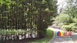 银湖翡翠 毛坯一楼带花园户型 挂东头送同面积地下室 随时看房,武汉东西湖区金银湖东西湖区金山大道88号(银桥南侧)二手房4室 - 亿房网
