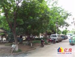 常青花园十四村 精装2房 有学位 中间楼层 临地铁 老证