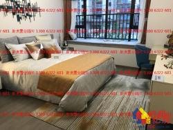 白沙洲直接认购新房新力城精装住宅117平三房