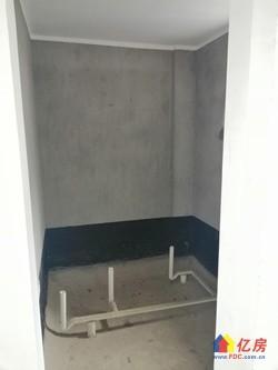 水印桃源毛坯湖景房 双阳台 电梯视野好 证满 钥匙随时看房