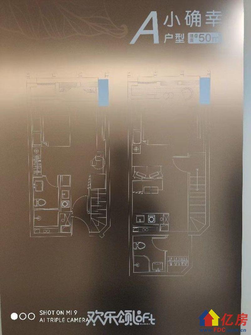 金银湖畔+地铁口+层高5.2m+LOFT公寓+均价1.2万起,武汉东西湖区金银湖东西湖区金银湖南一街与环湖西路交汇处二手房2室 - 亿房网