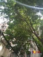 沈阳路小学旁精装低楼层两房随时看,武汉江岸区永清五福路二手房2室 - 亿房网