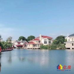 武汉顶级别墅 F天下独栋 南北通透 客厅挑高530平花园 欧式皇家园林