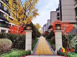 光谷核心,低密度,高绿化,叠拼别墅