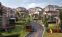 不限购豪华独栋,前庭后院,皇家园林设计,保值精品
