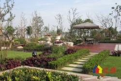 中法新城,独门独院,超大赠送花园,带露台,桂林山水园艺设计