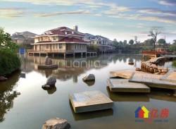 知音湖畔,独门独院,300平超大花园赠送,户型方正南北通透