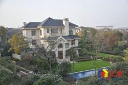 豪横别墅群,华中最大别墅区,前庭后院总价160w起