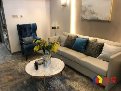 青山核心区域 正地铁口 配套成熟 4.5米 买一层送一层 复式公寓 毛坯现房急售