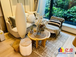 东湖旁 东湖城拾光 小户型32平复式公寓 买一得二 不限购 可贷款 总价低急售