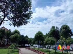 东西湖区 金银湖 金珠港湾70年产权现房别墅