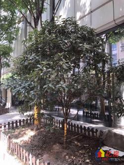 徐东大街精装两房福星惠誉高端住宅