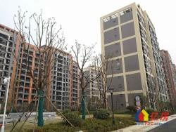 武汉,每天不一样!东西湖区 金银潭将军路 地铁时代常青城 2室2厅1卫  78㎡