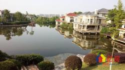 低于市场100万F天下独栋别墅临水系挑高客厅花园平整
