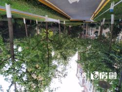 东湖高新区 葛洲坝世纪花园 3室2厅2卫147.72㎡