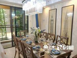 新房 新房 青山滨江商务区 地铁5号线 直接认购 大户型豪装江景房
