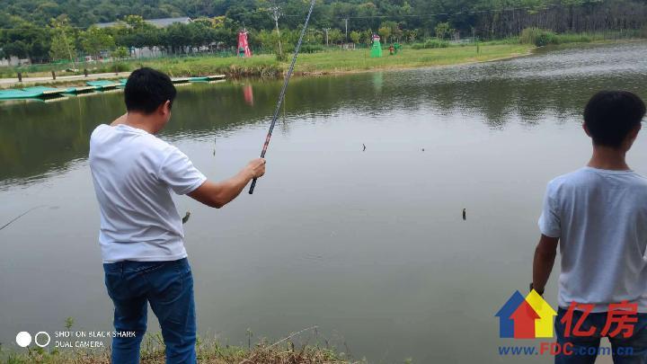 钓鱼3.jpg