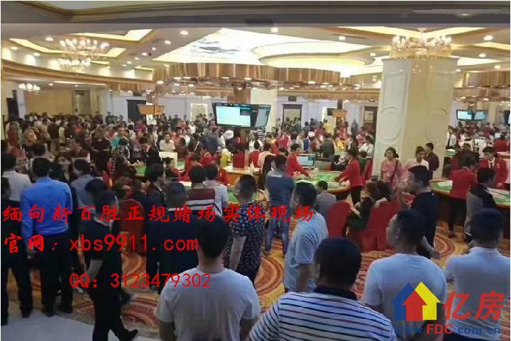 QQ图片20200101184925_副本.png