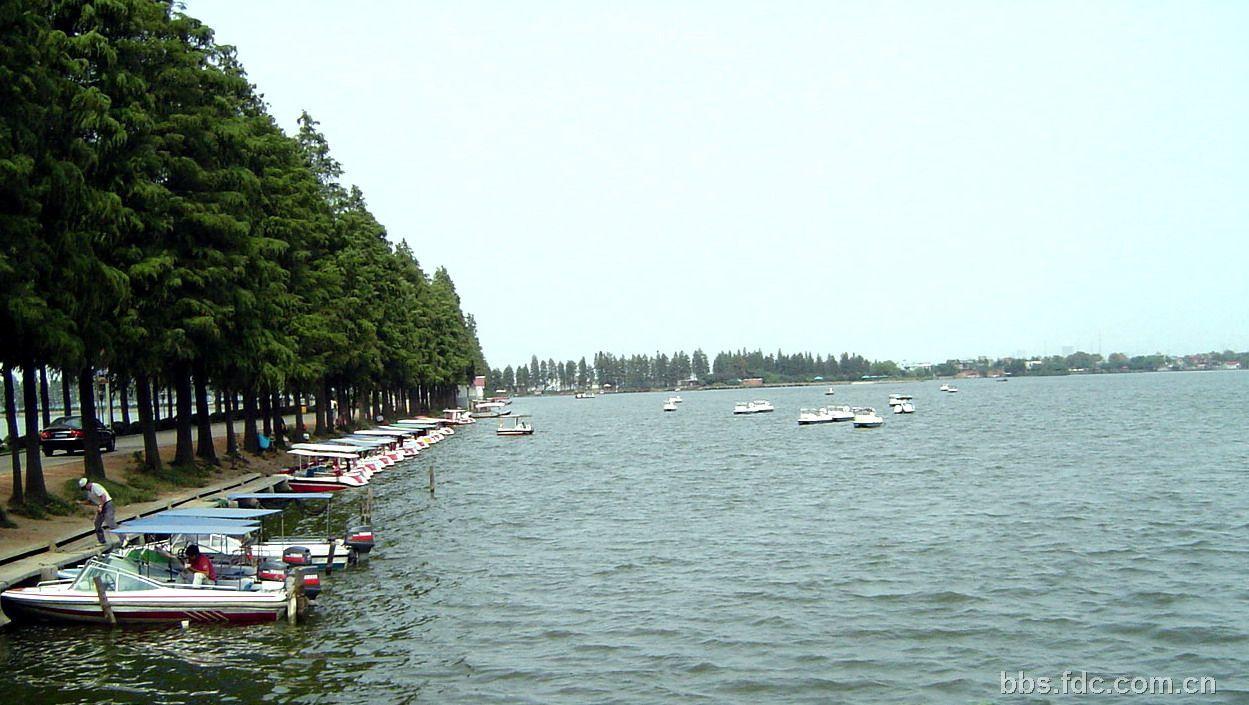 版主: 席地玩石头  磨山风景区位于东湖风景区内占地约5平方公里.