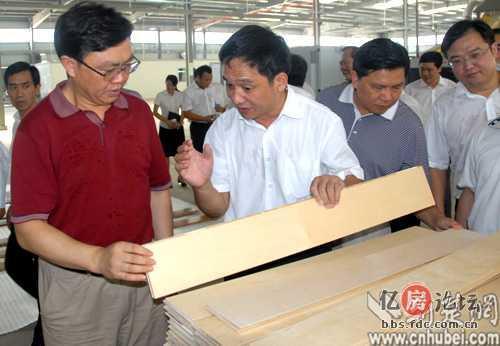 [讨论]鹰冠的木芯板vs福汉木芯板哪个好呢