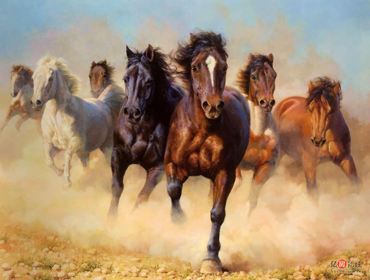 动物 国画 马 骑马