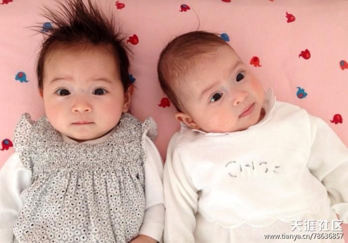 网上看到一对赛混血双胞胎的小美女,实在是太可爱了