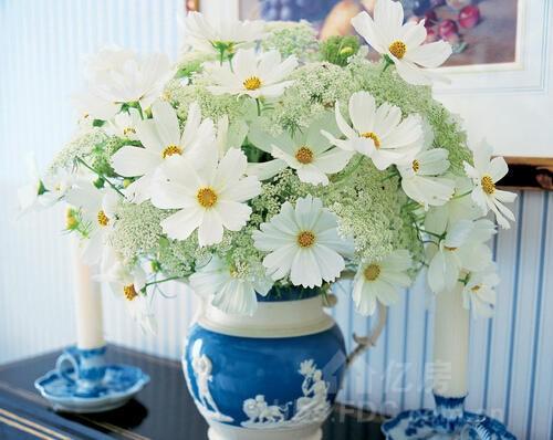 家居花瓶摆放风水之鲜花摆放风水禁忌-团购优惠-亿房