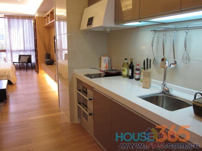 光谷软件园区内 独门独户 单身公寓 带卫生间阳台厨房