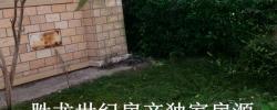 【胜龙房产独家房源】 未来海岸挂头联排别墅 花园大 110万低价诚售