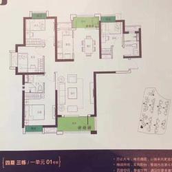 海伦春天正规小区全明双南采光好房型佳得房率高3号地铁口精装