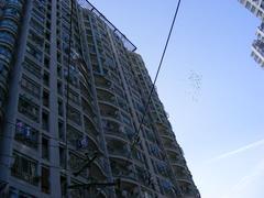我是房东,急需用钱故卖房,武汉江岸区大智路江岸区京汉大道929号二手房1室 - 亿房网