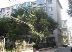 江岸区 惠济 武汉市老干部宿舍 2室2厅1卫  98㎡