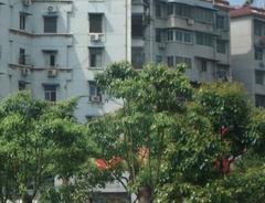 复兴村汉江公寓