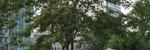 汉阳区 王家湾 国信新城三期 3室2厅2卫 112.17㎡,武汉汉阳区王家湾汉阳郭茨口1号琴台大道二手房3室 - 亿房网