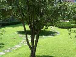 汉阳区 钟家村 鹦鹉花园六期 4室2厅2卫 161㎡