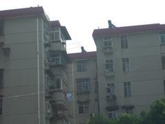 武昌区 岳家嘴 2室1厅