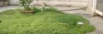 武昌区 小东门 民主路急救站宿舍 2室1厅1卫  69㎡,武汉武昌区小东门武昌民主路二手房2室 - 亿房网