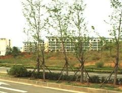鼓风机厂宿舍
