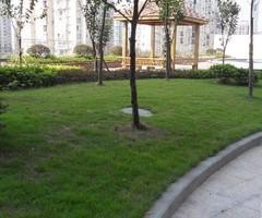 长安佳苑精装三房出售
